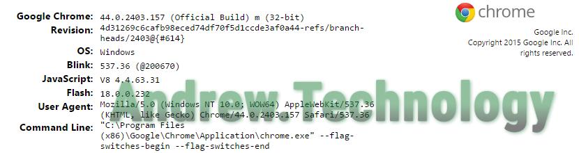 Chrome Version Info in Windows 10